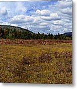 Cranberry Glades Panoramic Metal Print