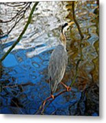 Crane Perching 1 Metal Print by John Magnet Bell