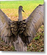 Crane Spreading Wings Metal Print