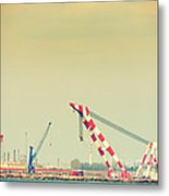 Cranes Metal Print