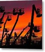Cranes Metal Print by Lynda Jeffers