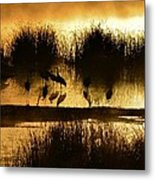 Cranes On Golden Pond Metal Print