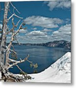 Crater Lake Tree Metal Print