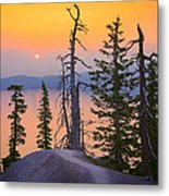 Crater Lake Trees Metal Print by Inge Johnsson