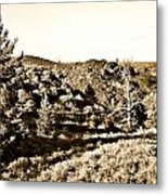 Craters Of The Moon1 Metal Print
