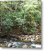 Creek 13 Metal Print