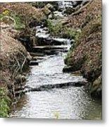 Creek In Alabama Metal Print