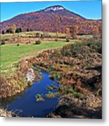 Creek In The Valley Metal Print