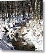 Creek In Winter Metal Print