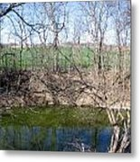 Creek Recovering From Winter Metal Print