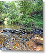 Creekside 2 Metal Print