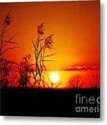 Creole Trail Sunset Metal Print