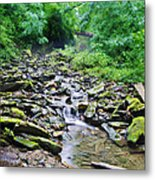 Cresheim Creek Metal Print
