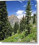 Crested Butte Flowers Metal Print
