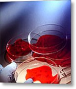 Crime Lab Metal Print by Olivier Le Queinec
