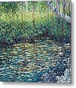 Crocodile Creek Metal Print