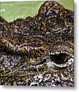 Crocodile Eye Metal Print