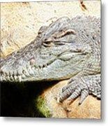Crocodile Fractal Metal Print