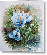 Crocuses Metal Print