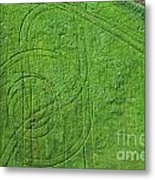 Crop Circles Metal Print