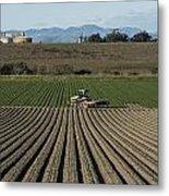 Crops In San Luis Obispo County Metal Print