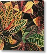 Croton Leaves Metal Print