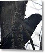 Crow Eye Metal Print