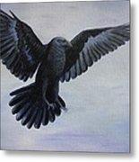 Crow Flight Metal Print