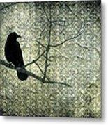 Crow Knows Metal Print