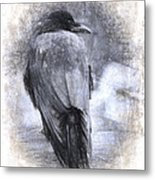 Crow Sketch Painterly Effect Metal Print