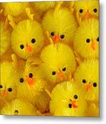 Crowded Chicks Metal Print