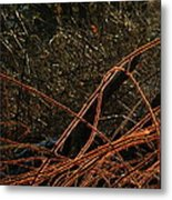 Crown Of Thorns II Metal Print