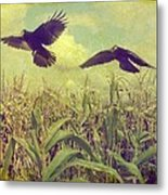 Crows Of The Corn Metal Print