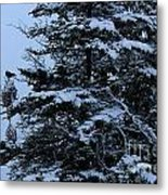 Crows Perch - Snowstorm - Snow - Tree Metal Print