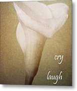 Cry Laugh Remember Metal Print
