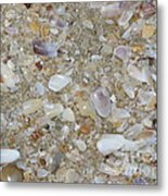 Crystal Shells Metal Print