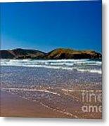 Curio Bay On South Coast Of New Zealand South Island Metal Print