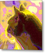 Curiosity And The Cat 2 Metal Print