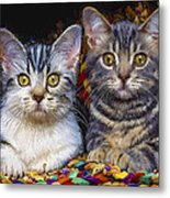 Curious Kitties Metal Print