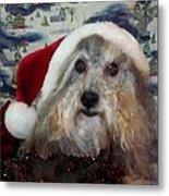 Curlys Christmas Metal Print by Rosalie Klidies