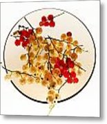 Currants On A Plate Metal Print