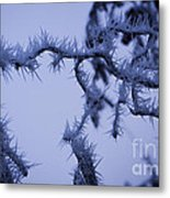 Curves And Spikes Metal Print