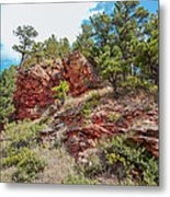 Custer State Park Ecology Metal Print