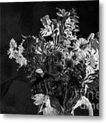 Cut Flowers In Monochrome Metal Print