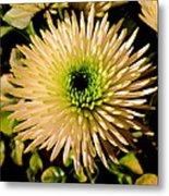 Cut Flowers Metal Print by Joyce Woodhouse