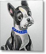 Boston Terrier Wall Art Metal Print