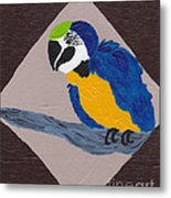 Cute Little Macaw  Metal Print