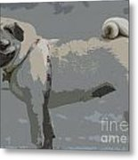 Cute Puggy Dog Metal Print