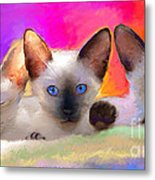 Cute Siamese Kittens Cats  Metal Print
