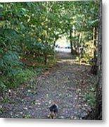 Cutest Dog Ever - Animal - 011352 Metal Print